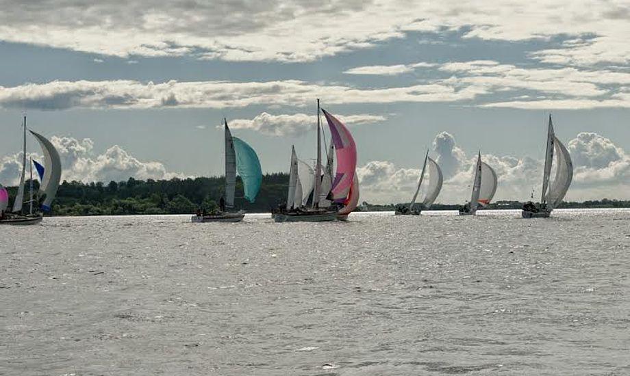 Sidste år deltog 56 både i Als Rundt. Foto: John Rohde Jensen