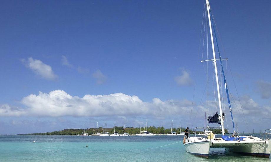 Fem katamaraner fra ACT Boats er allerede havnet i England. Foto: PR-foto