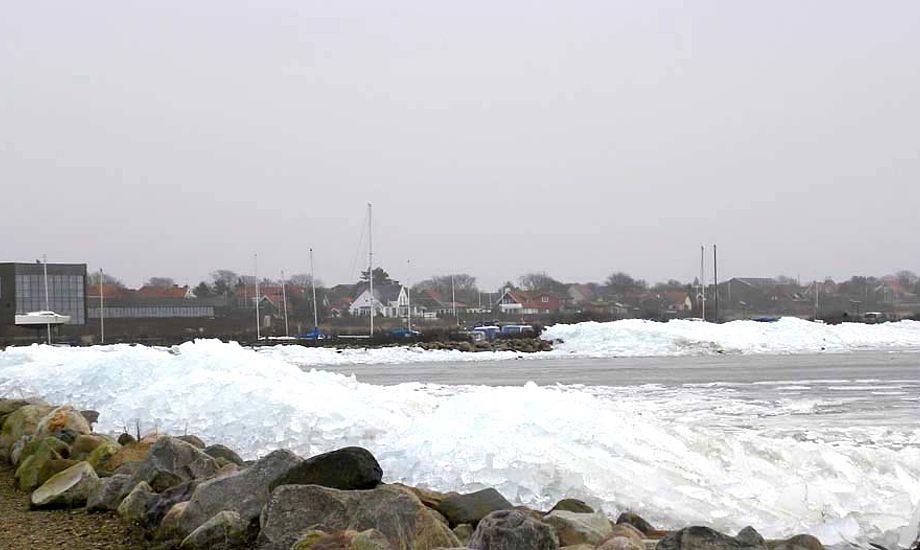 Ringkøbing har stadig meget is. Foto: Kim Specht