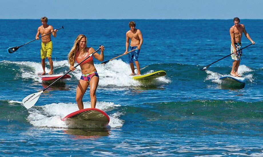 Australske Stand Up Paddlere. Det ser jo herligt ud! Foto: JP Australie