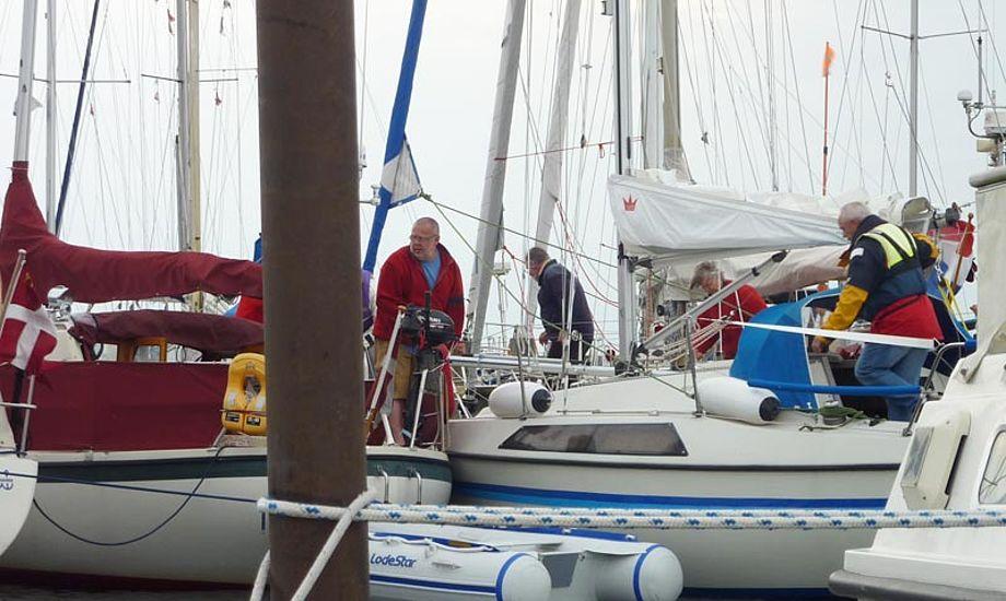 Miraculix fra Præstø fik efter en rum tid plads på Omø. Foto: Katrine Bertelsen