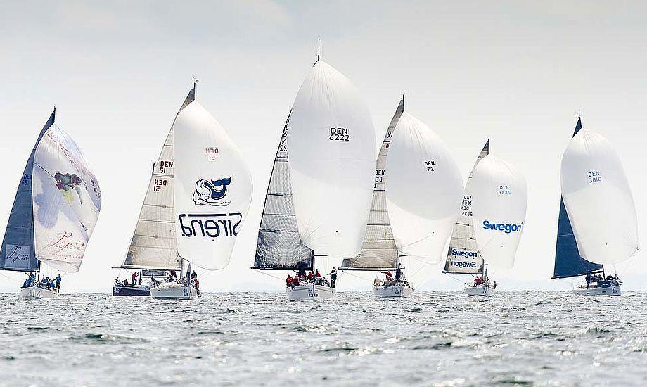 Sejlads i Aarhus med store både i 2012. Egå Sejlklub fortsætter mens Kerteminde Sejlklub har kastet håndklædet i år. Foto: Mick Anderson/Sailingpix.dk