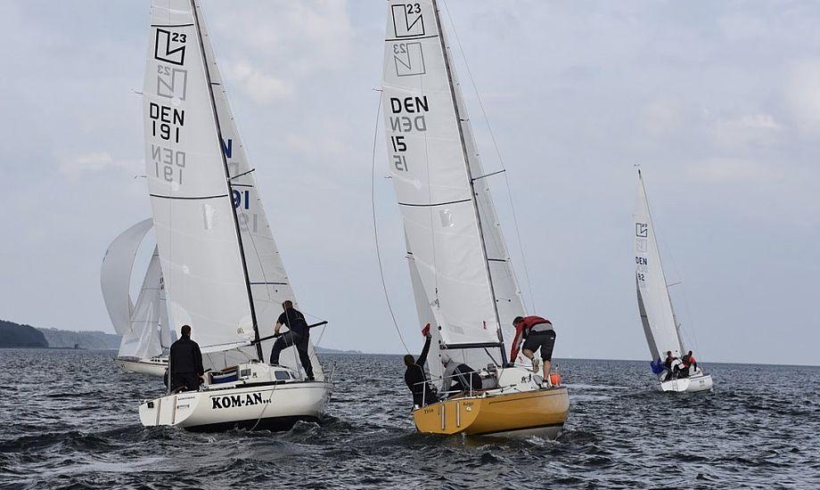 De 15 L23'ere sejlede DM i Vejle sammen med Albin Express. Foto: L23 Klubben
