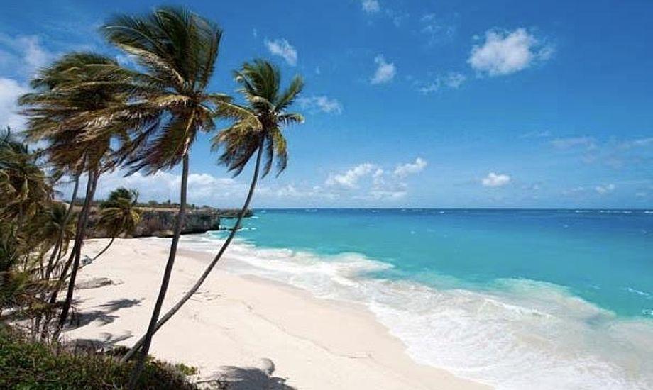 Lars Hall og Michael Staal har tidligere været langt fremme til Finnjollernes VM, som i år sejles i smukke omgivelser på Barbados. Foto: Andy Denison