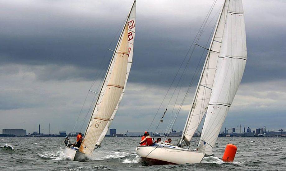 Der forventes 25 deltagende Ylva'er samt 10-15 Luffe 37'er. Et sted mellem 150-175 sejlere. Foto: ylva.dk