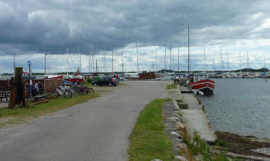 Blæsevejr på Langør på Samsø forleden. Foto: Katrine Bertelsen