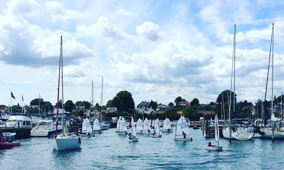 Tre Optimistfelter med i alt 86 sejlere dystede søndag på Øresund. Foto: Jon Møgelhøj