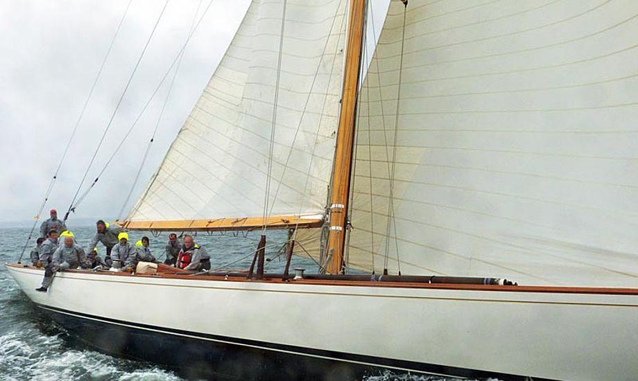 Den ene af Danmarks to tolv-metere, Vanity V, var både fart og øjefryd på vandet og en klar publikumsmagnet i Svendborg havn. Foto: Søren Stidsholt Nielsen