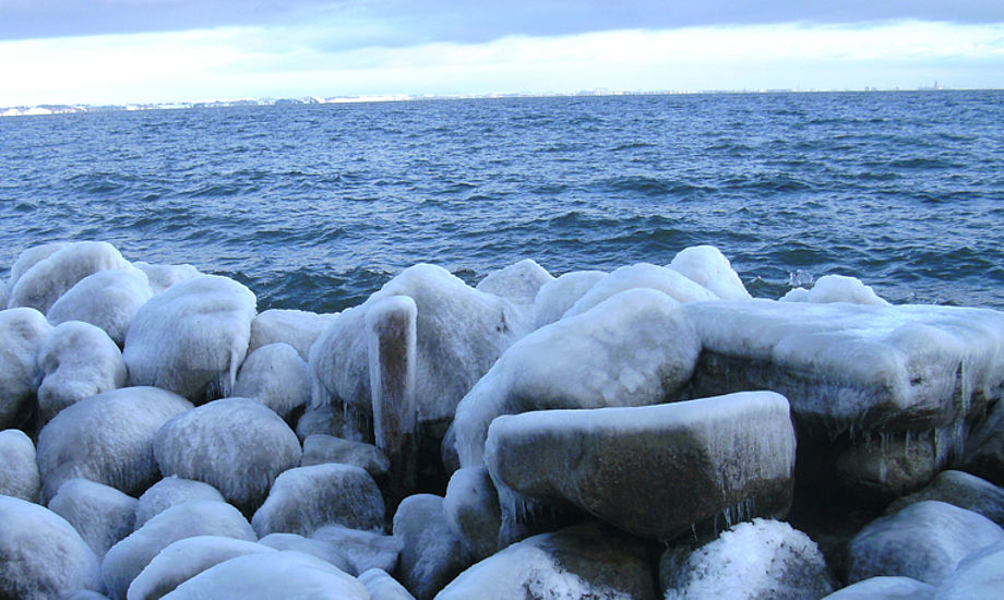 Vinter i Vedbæk. Foto: Lars Jensen