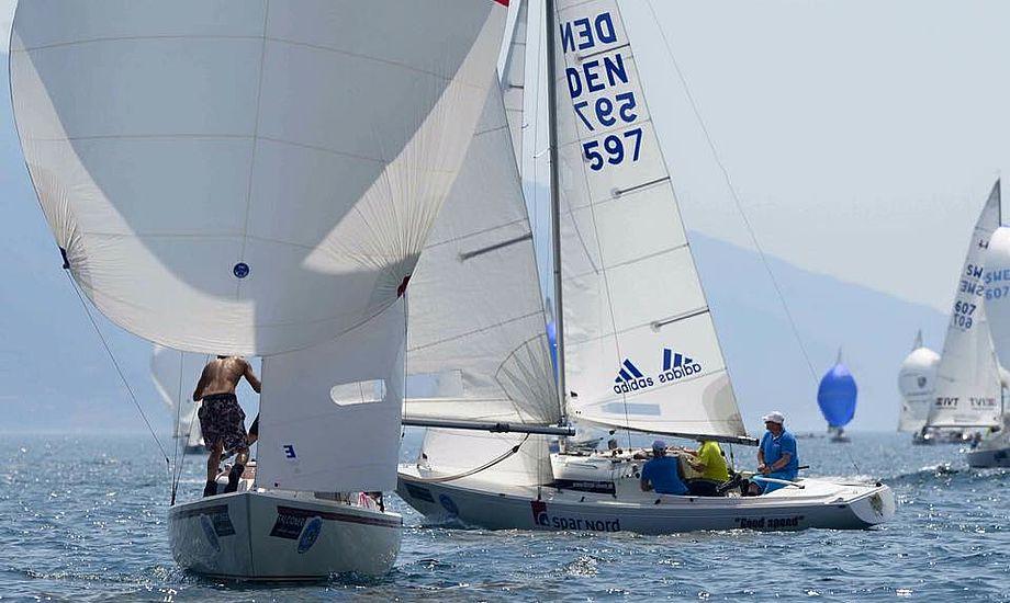36 H-både var på startlinjen til sidste års DM i Vejle. Foto: Troels Lykke