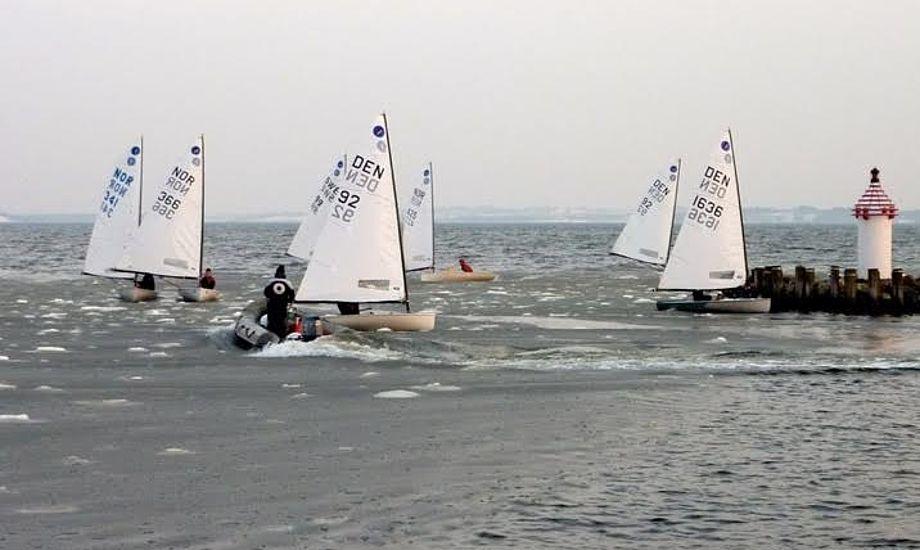 Sne og frostgrader kan ikke holde de unge sejlere på land. Foto: Kaløvig Bådelaug