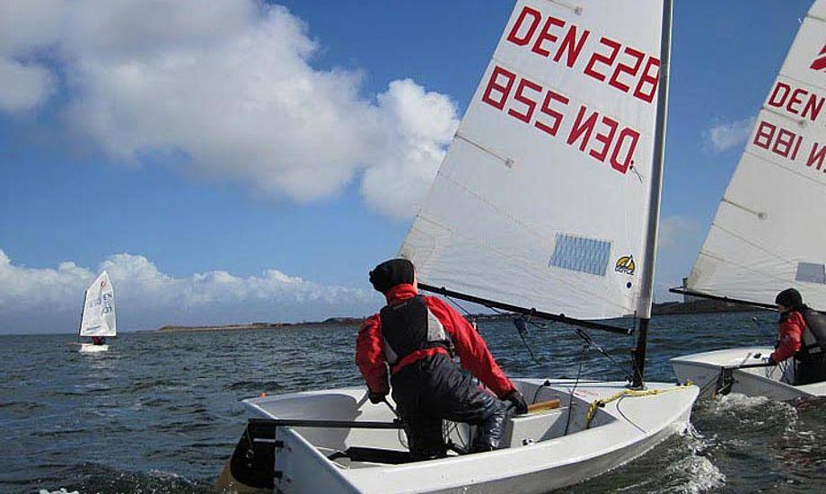 Sejlerne var klædt godt og fornuftigt på til det kolde vejr. Foto: Struer Sejlklub