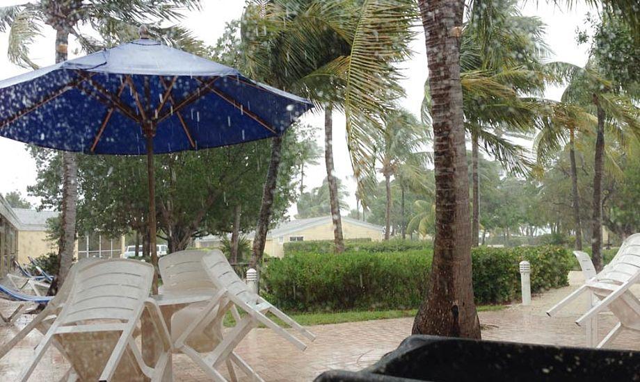 Ikke lige det man tænker om Florida, regn og storm. Foto: Thomas Paasch
