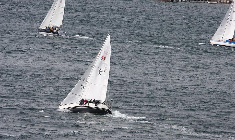 Her ses ædru sejlere i Lillebælt. Foto: Troels Lykke
