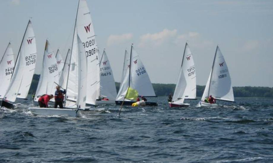 Sidste års Faxe Kondi Cup tiltrak også mange sejlere: Foto: psk.dk