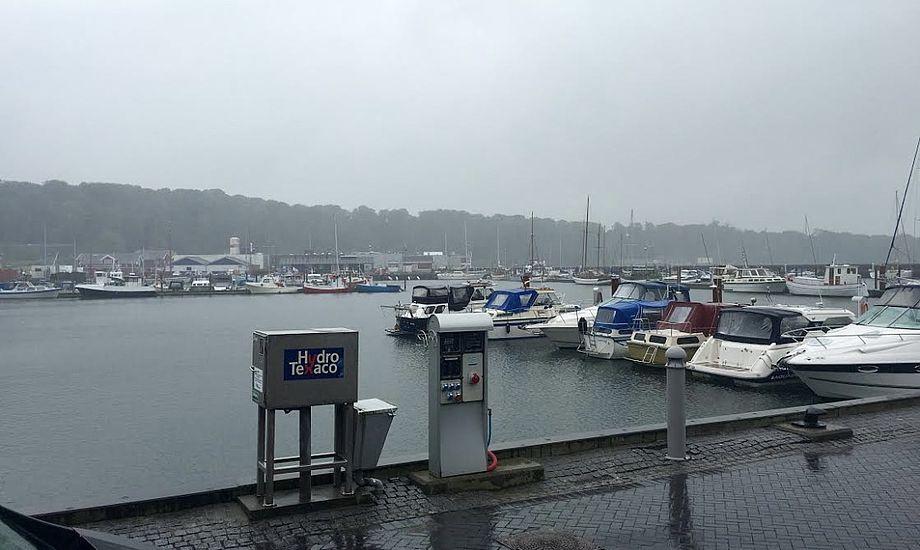 Manden blev fundet i havnebassinet i Lemvig. Foto: Sara Sulkjær