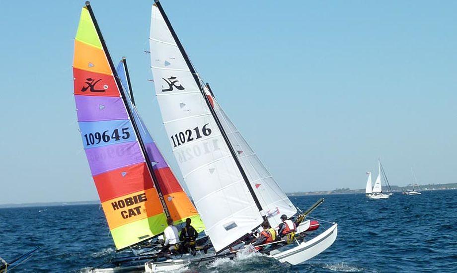 Skal du ikke sejle selv, er der rig mulighed for at være med på en kigger. Foto: Katrine Bertelsen