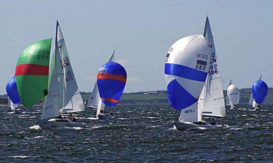Flere stærke sejlere mødes i Amtoft til VM-udtagelsesstævne i H-båden. Foto: Ole Vognstoft