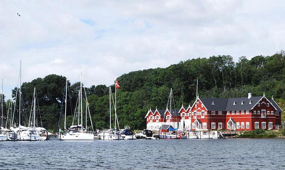 Dyvig på Als er et af landets mest naturskønne områder. Arkivfoto