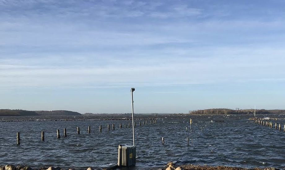 Broerne forsvandt i Veddelev Lystbådehavn efter stormen 'Urd'. Foto: Jakob Voltzmann