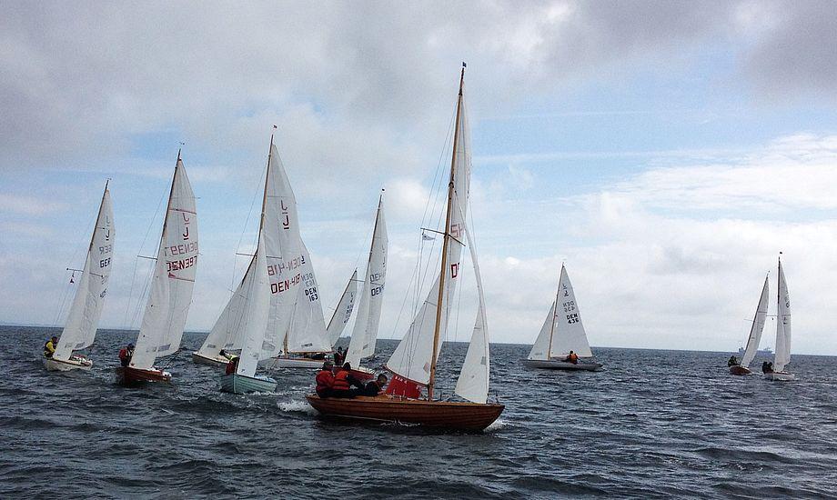 Her ses feltet på Øresund, hvor Horsens-sejlere var bedst i Juniorbåden. Foto: Dan Ibsen