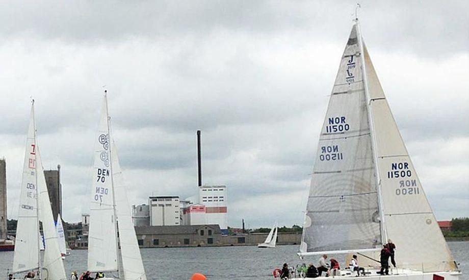 Kom til havnefest og kapsejlads i Aalborg d. 21. juni. Foto: Aalborg Regatta