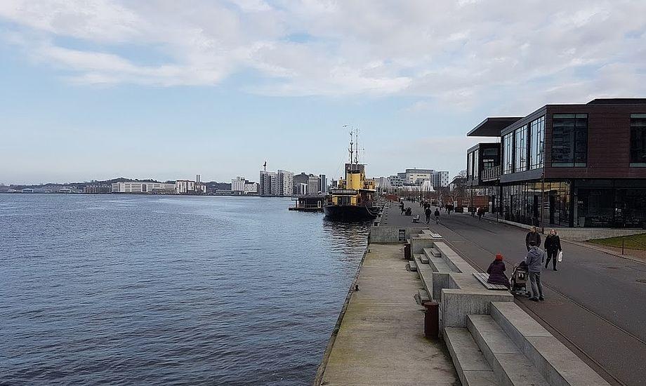 Det var her i Aalborg at sejlbåd drev på Jernbanebro. Foto: Troels Lykke