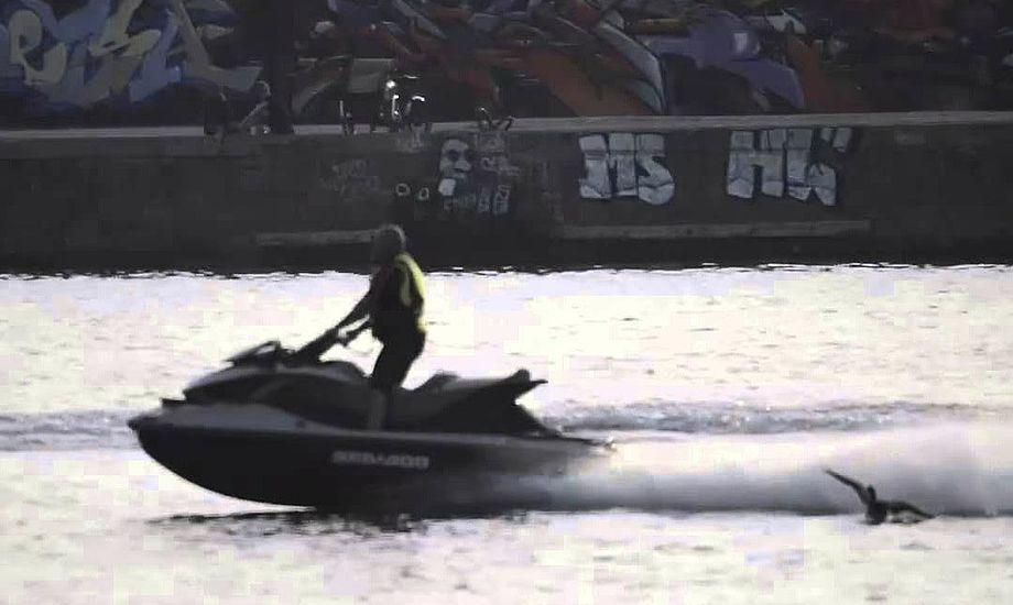 Et speedbådskørekort skal ikke længere give lov til sejlads på vandscooter, mener ministre. Foto: YouTube