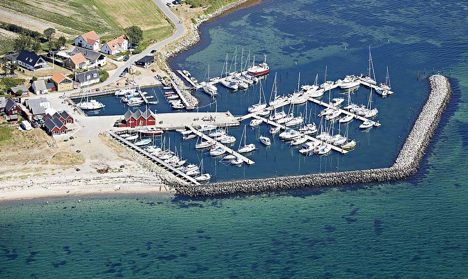 Omkring Mårup Havn er hyggelige småhuse, strand og flot natur. Foto: Privatfoto