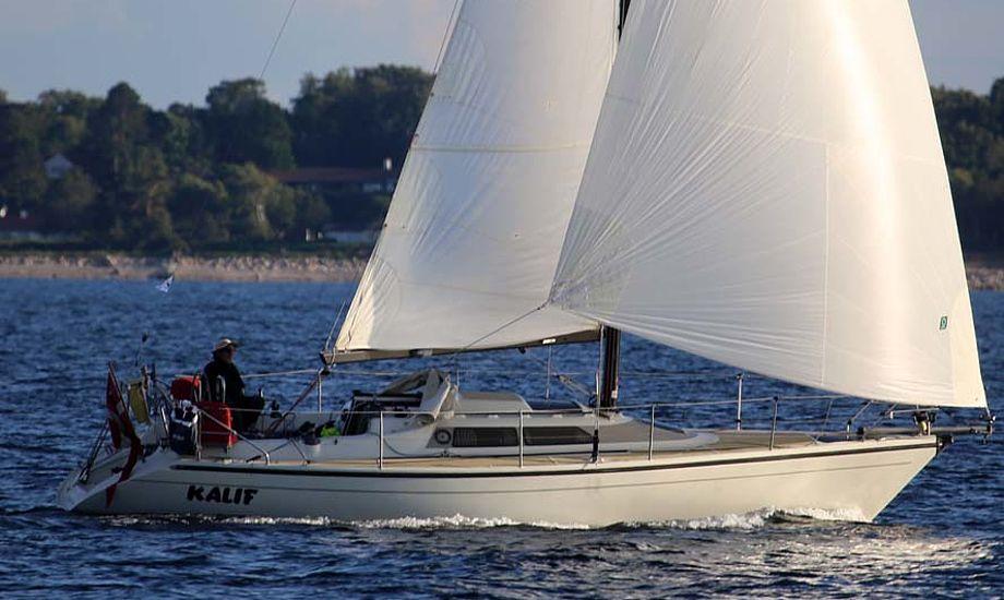 Ole Jessen i Kalif sejlede Sjælland Rundt på 59 timer og 42 minutter. Foto: Troels Lykke