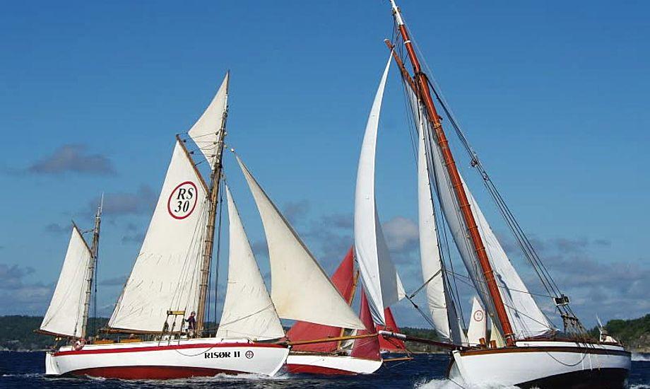 Der er alt fra helt små både til 40 fods skibe, på Risør Træbådsfestival. foto: Leif Sigvaldsen