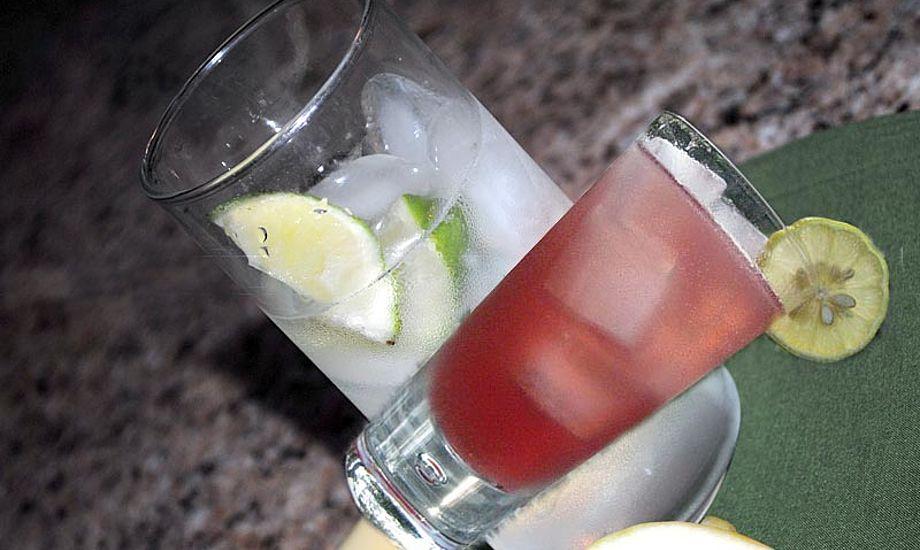 Et par gin tonics for mange kan koste dyrt. Collage Katrine Bertelsen