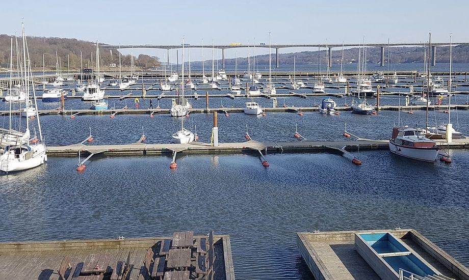 Lystbådehavnen har i alt 650 pladser, hvoraf de 100 står tomme. Foto: Troels Lykke