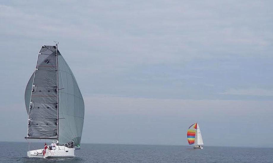 Solo-sejler i Seascape 27 ses her til venstre. Foto: Kim Dragstrup/Helsingør Sejlklub