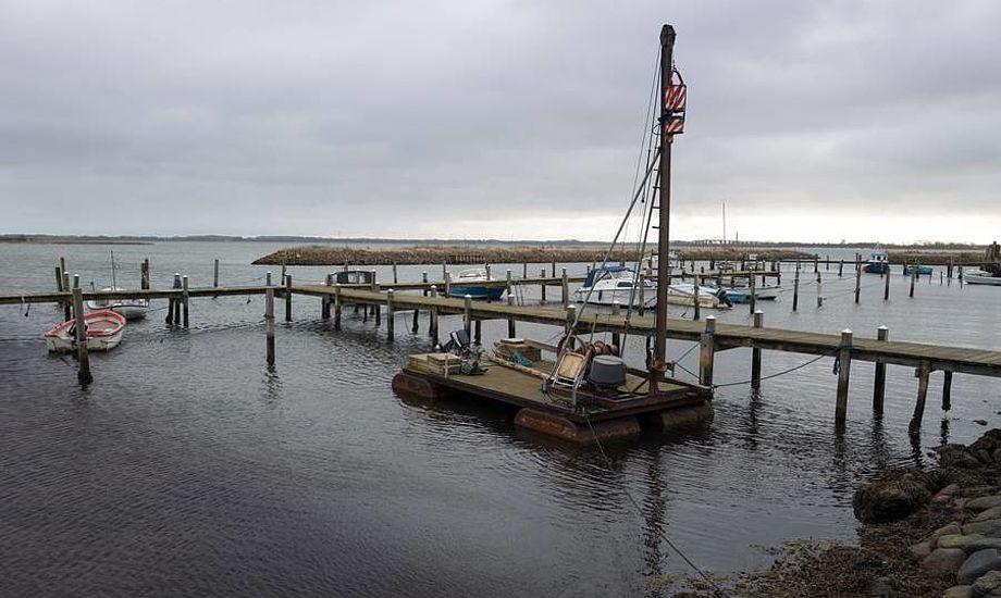 Eneste aktivitet lige nu i Vemmenæs Havn er badende kvinder. Søren Stidsholt Nielsen, Fyns Amts Avis, Søsiden