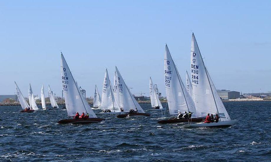 Lørdag var der frisk vind ved Drage-DM i Hellerup i et felt med 27 både fra syv nationer. Foto: Katrine Bertelsen