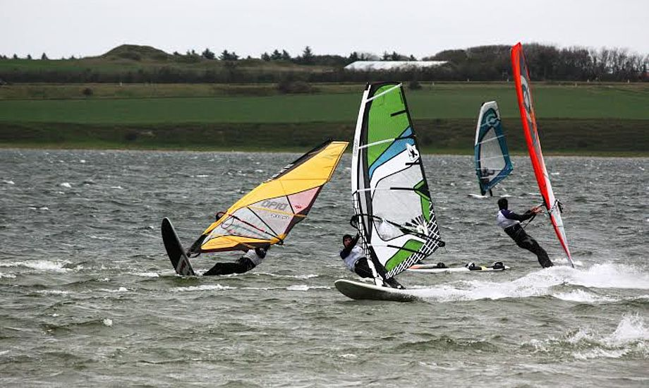 Naturfredningsforening og Dansk Ornitologisk Forening Nordvestjylland har talt for et totalt forbud mod surfaktiviteter på Vandet Sø.