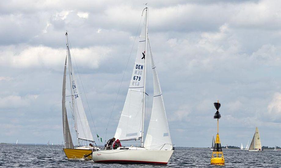 Foruden pokalen til overalt vinderen, stod Elvstøm Sails klar med gavecheks til løbsvinderne. Foto: Sebastian Bak