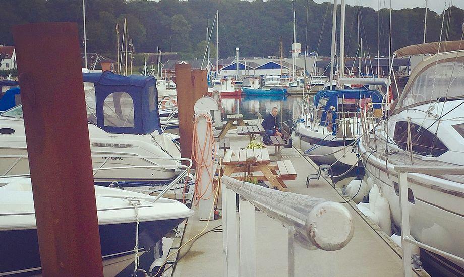 Flere sejlere lægger i sommermånederne turen forbi Lemvig Havn. Foto: Rikke Andersen