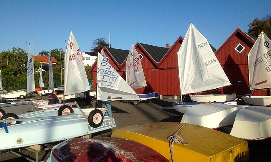 46 A-Optimister sejler Harboe Cup 2014. Foto: Skælskør Amatør-Sejlklub