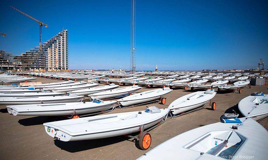 I bådpark 3 står 300 nye Laserjoller klar til VM-sejlerne. Foto: Peter Brøgger