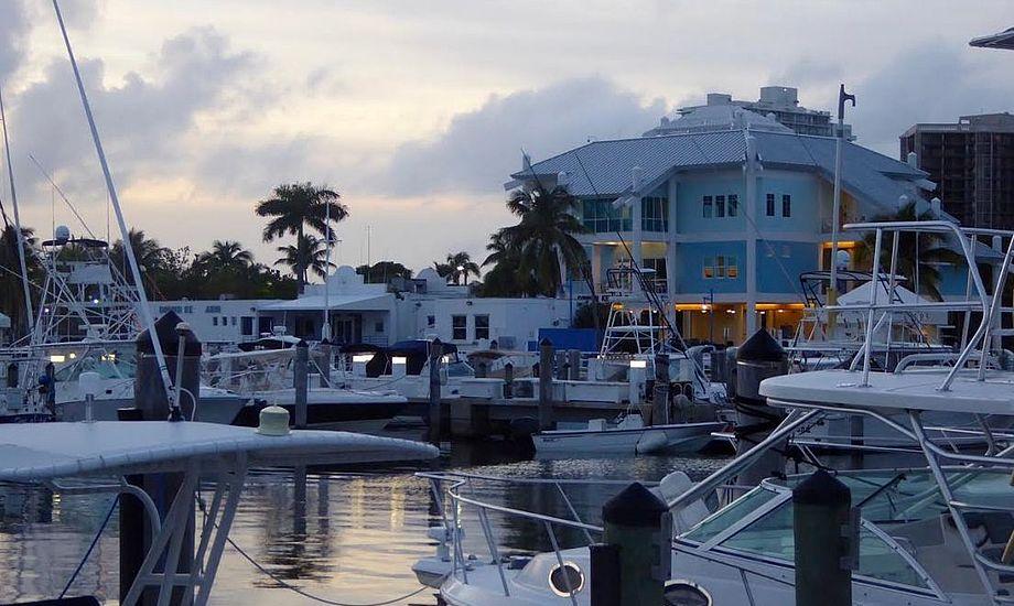 Marinaen i Coconut Grove, hvor man tilsyneladende nemt kan få ubudne gæster. Foto: Signe Storr