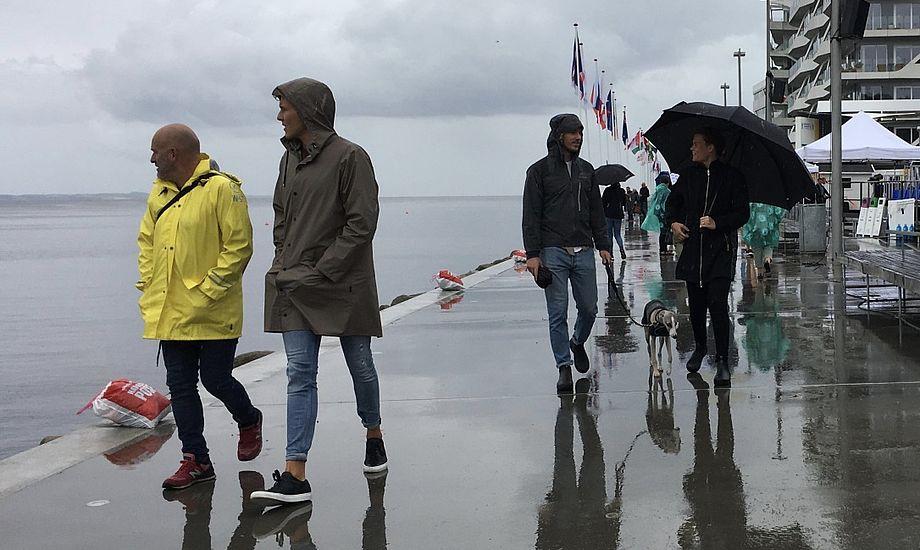 VM i sejlsport regner væk på havnen i Aarhus. Foto: Sara Sulkjær