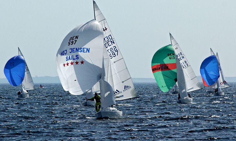 Claus Høj Jensen har fem stjerner i spileren, et for hver VM-guld i H-båden. Foto: Ole Vogntoft