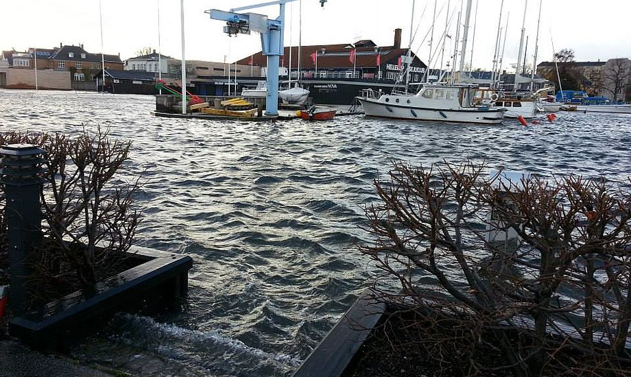 Hellerup Havn. Foto: Jon Møgelhøj