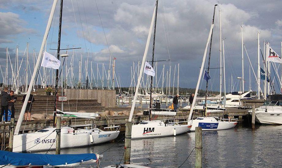 De 3 nye J70'ere i Horsens Havn. Foto: Peter Bjerremand Jensen