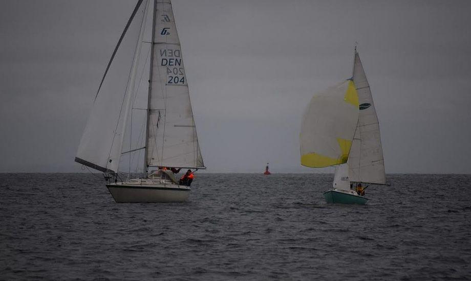 Seks både med besætning mødte kl. 09 2. juledag til kapsejlads i Lynetten. Foto: Lars Frandsen