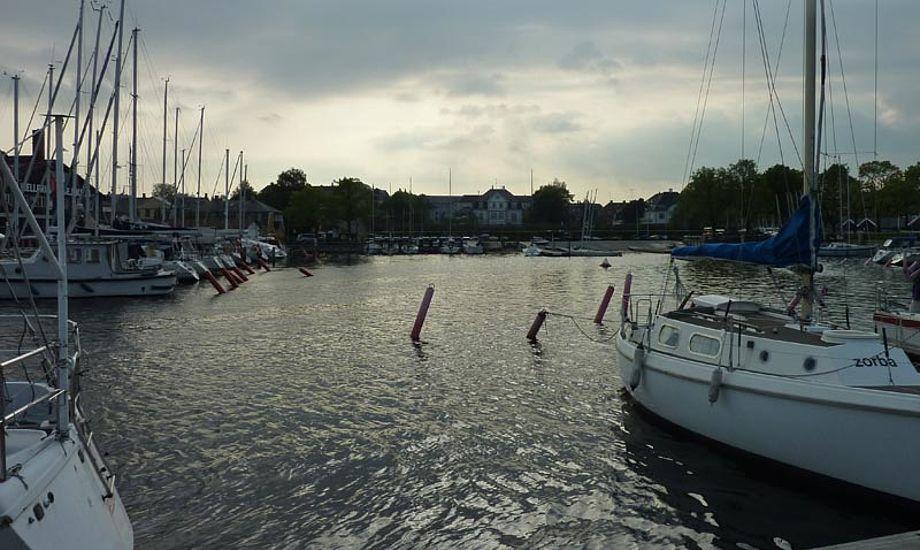 Mange drukneulykker sker i havnene. Foto: Katrine Bertelsen