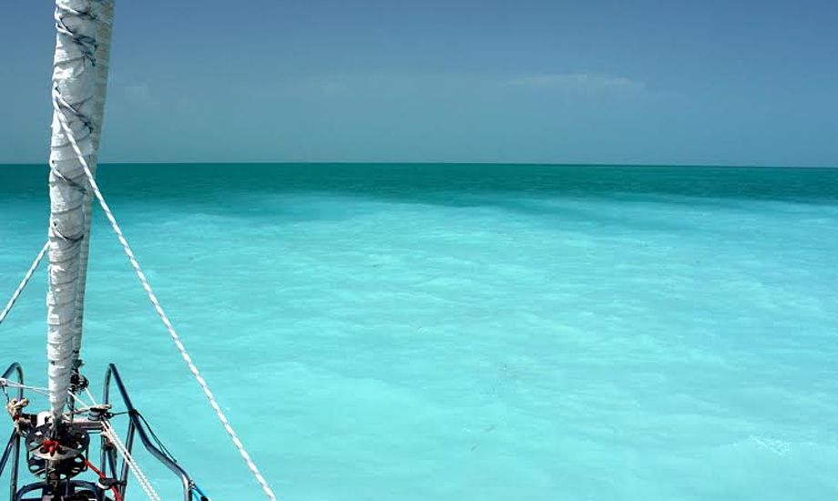 På vej tilbage mod Florida sejler Signe og Henrik igennem en fish mud. Der er hundredevis af bonefish, der søger bunden for mad, men udefra ser det ud som om, man sejler mod en sandbanke. Foto: Signe Storr