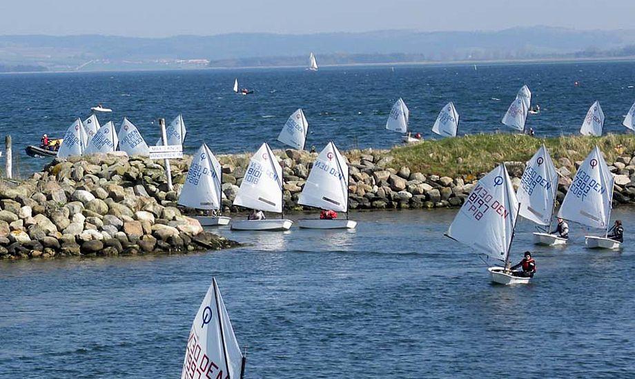 Glade dage i Egå med dygtige trænere, glade sejlere og godt vejr. Foto: Kim Specht
